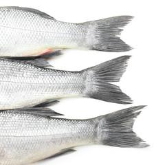 Fresh seabass fish on white background