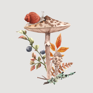Watercolor forest mushroom vector composition