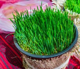 Healthy detox. vegan diet detox green grass