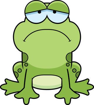 Sad Little Frog