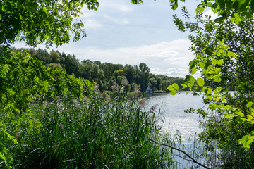Idyllic view of Grunewald, Havelhöhenweg, Berlin, Germany on a sunny day
