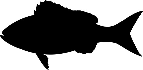 Vermilion Snapper Fish Silhouette Vector