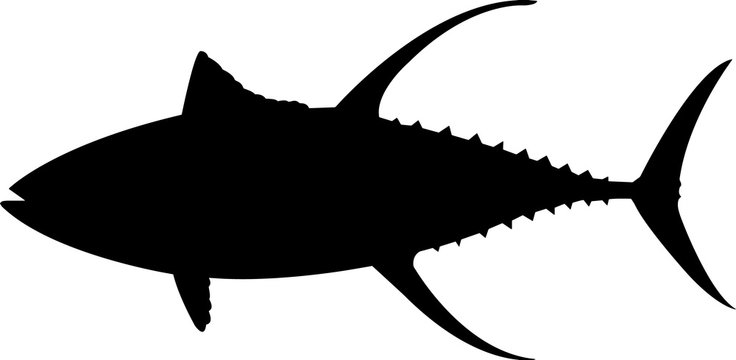 Yellowfin Tuna Fish Silhouette Vector