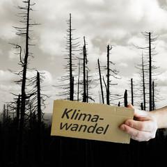 Schild aus Pappe mit der Aufschrift Klimawandel. Im Hintergrund ein toter Wald.
