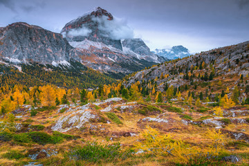 Wall Mural - Colorful autumn alpine landscape with yellow larches in Dolomites, Italy