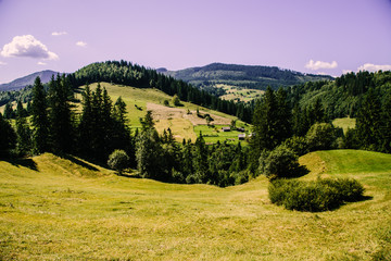 Photo sur Plexiglas Lilas Mountain village landscape in the wild Ukrainian Bukovyna area