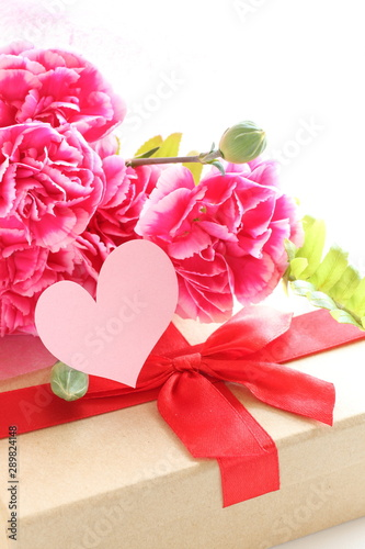 elegance pink carnation with copy space for Mother's Day Images