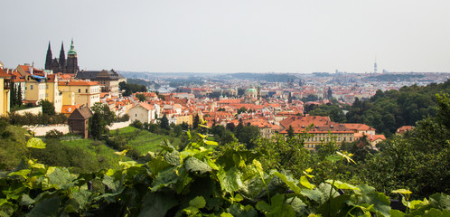 Prague - the capital of the Czech Republic. Panorama of the city.