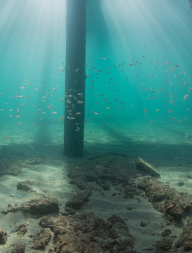LIght rays pentrating beneath the water surface.