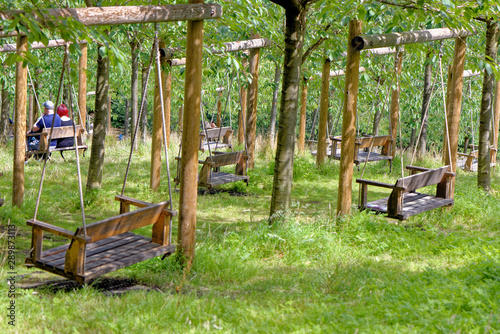 Empty Garden Tree Swings In Summer Stock Photo And Royalty