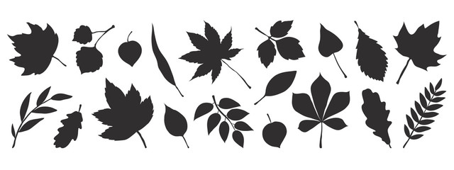Black autumn leaves. Decorative fall elements isolated on white background. Vector illustration foliage silhouettes for greeting vintage cards and posters