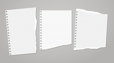 Set of torn white note, notebook paper pieces stuck on dark grey background. Vector illustration