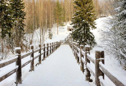 Beautiful winter landscape. Wooden bridge in a forest or park
