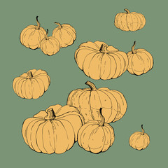 set of pumpkins , isolated images on colored background, doodles
