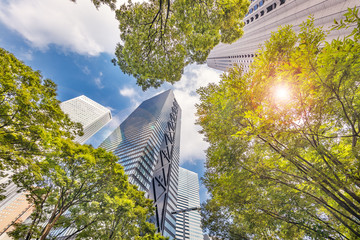 青空と新宿高層ビル群