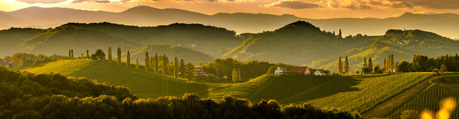 Poster Vineyard South styria vineyards landscape, near Gamlitz, Austria, Eckberg, Europe. Grape hills view from wine road in spring. Tourist destination, panorama