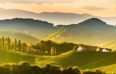 South styria vineyards landscape, near Gamlitz, Austria, Eckberg, Europe. Grape hills view from wine road in spring. Tourist destination, panorama Fotoväggar