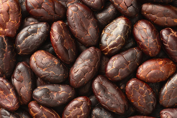 food background of peeled cocoa beans, top view
