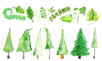 Bäume und Blätter in Aquarell Wall mural