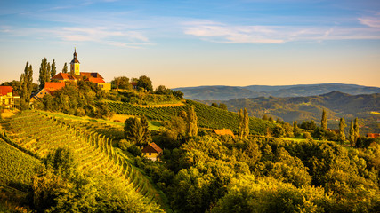 Autumn Landscape panorama of vineyard on an Austrian countryside during sunset in Kitzeck im Sausal Fototapete