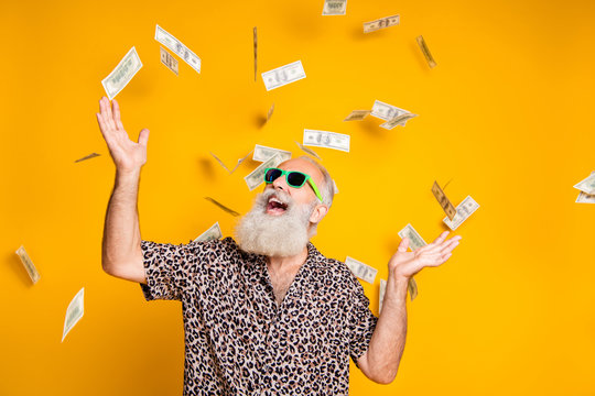 Portrait of crazy funky funny old bearded man hipster in green eyeglasses eyewear look up at money falling scream win lottery wear leopard stylish shirt isolated over yellow background