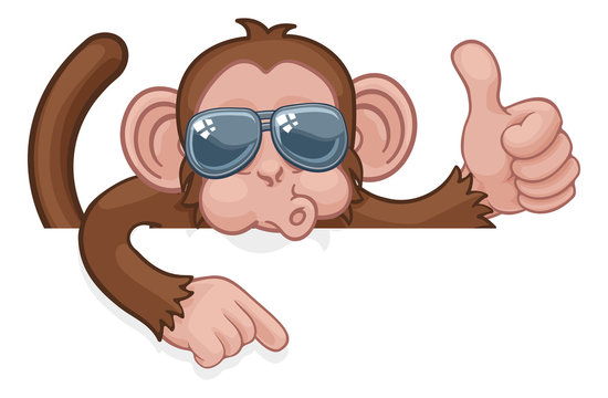 A monkey cool cartoon character animal wearing sunglasses peeking over a sign, giving a thumbs up and pointing.