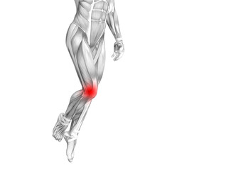 Conceptual knee human anatomy with red hot spot inflammation or articular joint pain for leg health care therapy or sport muscle concepts. 3D illustration man arthritis or bone osteoporosis disease