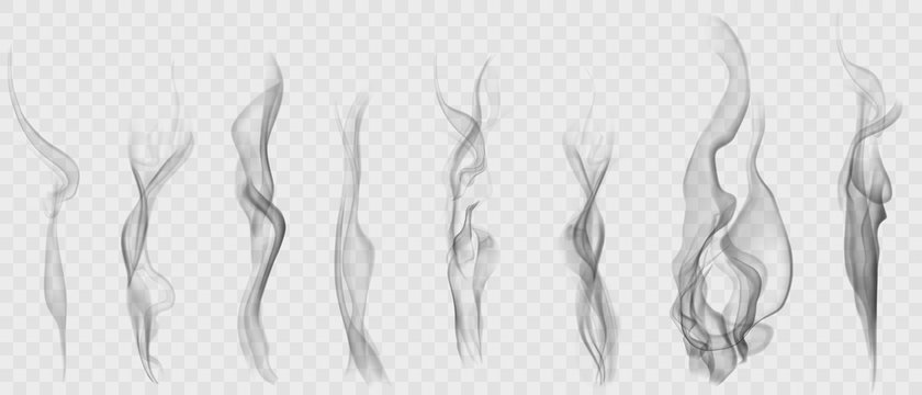 Set of realistic transparent smoke or steam in white and gray colors, for use on light background. Transparency only in vector format