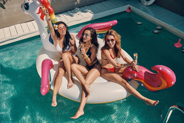 Top view of attractive young women in swimwear smiling and drinking champagne while floating on inflatable unicorn in swimming pool outdoors