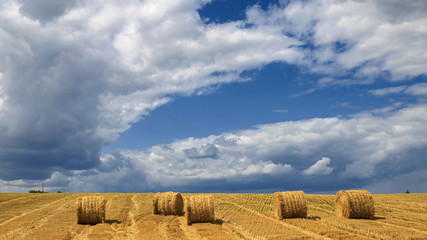 Fototapete - Yellow haystacks, field wheat, blue sky with clouds. Beautiful dynamic landscape on Sunny day. Beauty nature, agriculture and seasonal harvest time. Scenic agricultural land.