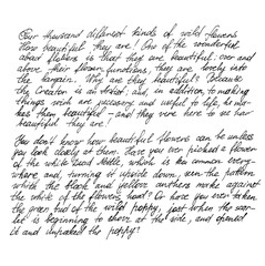 Undefined text english words Handwritten letter Calligraphy