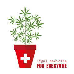 legal medical marijuana medicine for everyone plant cannabis in flowerpot vector illustration EPS10