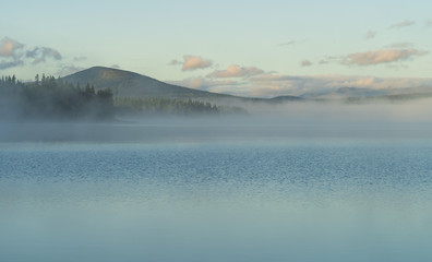 Fotomurales - Fog over a lake in scandinavia during a summers morning. Jamtland, Sweden.