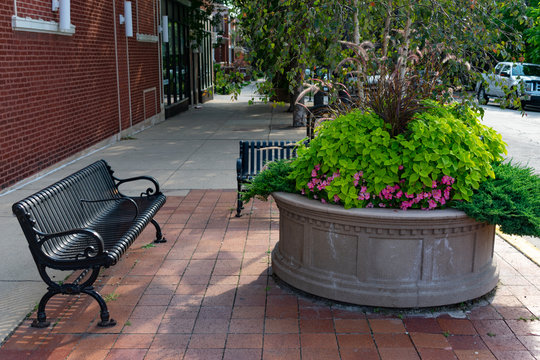 Benches and Planter with Beautiful Plants and Flowers on the Sidewalk in Andersonville Chicago