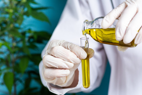 Scientist pouring cannabis oil close up