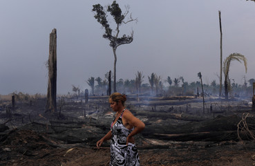 Eliane Muller, 40, walks next to a burnt tract of the Amazon forest as it is cleared by farmers, after the fire hit 2 acres from her cassava plantation in Rio Pardo