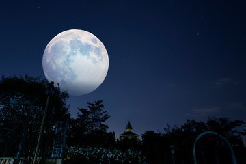 お月様が夜のバラの公園を明るくする Wall mural
