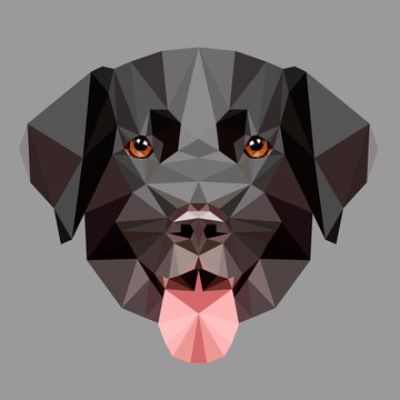 Low poly black labrador dog face on white background, symmetrical vector illustration isolated. Polygonal style trendy modern logo design. Suitable for printing on a t-shirt.