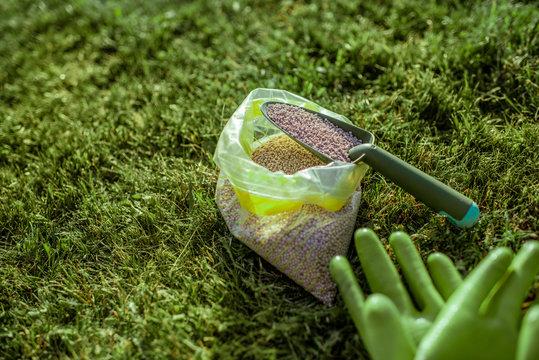 Fertilizer for grass growth in granules with gloves and scoop on the grass