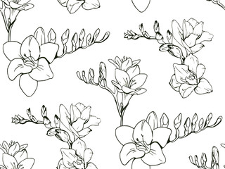 Seamless floral decorative pattern with black and white Freesia flowers on white background. Endless spring texture for your design, fabrics, decor, print, coloring book