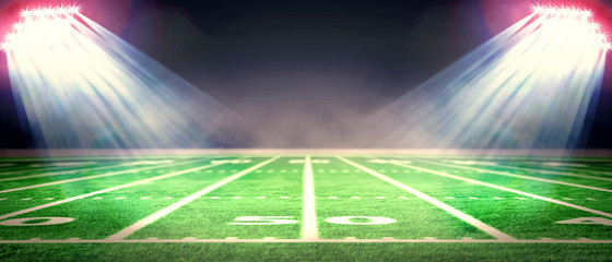 Perspective of football field. Football stadium with white lines marking the pitch. Perspective elements.Ragby football field with white lines marking the pitch. 3d illustration.