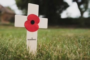 Photo sur Toile Poppy Poppy remembrance cross