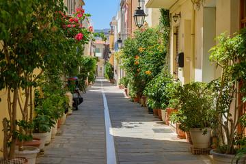 Gasse mit vielen Topfpflanzen, Rethymnon, Kreta, Griechenland
