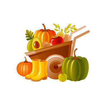 Farm wheelbarrow with harvest. Fruit, vegetable, rubber boots. Autumn fall pumpkin icon for harvest festival, thanksgiving day. Cartoon autumn vector illustration. Fall Isolated on white background