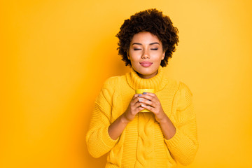 Photo of charming cute casual curly wavy pretty fascinating trendy girlfriend smelling her tea in cup holding with her two hands wearing knitted pullover with collar isolated vivid color background