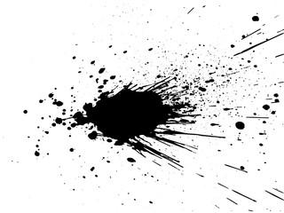 Aluminium Prints Form Black paint, ink splash, brushes ink droplets, blots. Black ink splatter background, isolated on white. Vector illustration