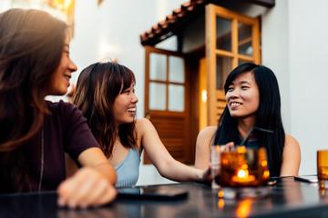 Beautiful asian friends chatting.