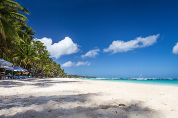 Fototapete - Tropical sandy shore