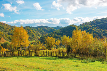 wonderful rural landscape in mountains. sunny autumn weather with clouds on the sky. trees in yellow foliage on the grassy pasture behind the wooden fence.  beautiful carpathian countryside
