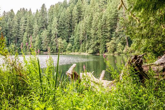 USA, Washington State, Battle Ground Lake State Park. View of the lake.